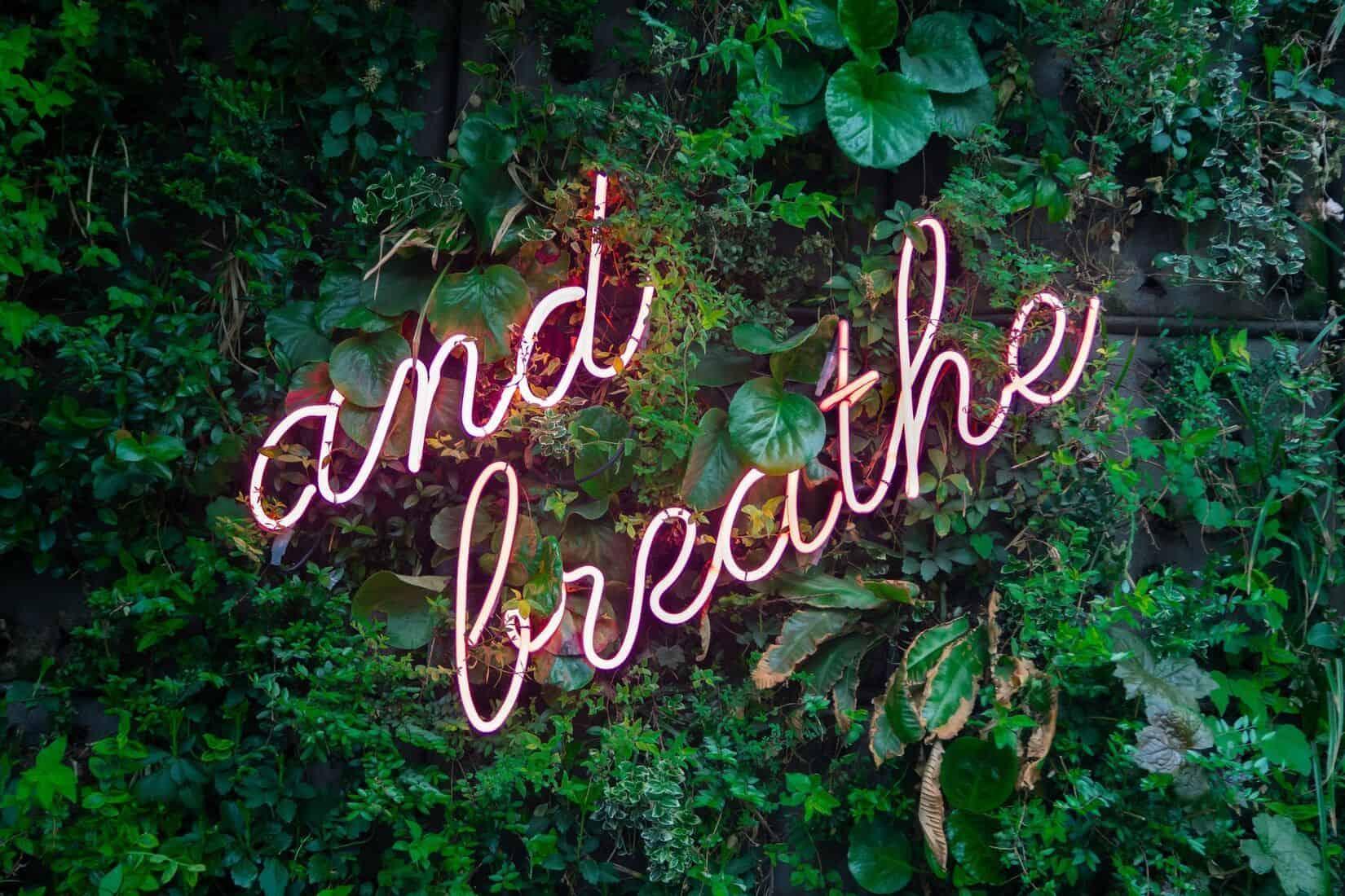 Et oui contrairement à ce que la plupart des gens pensent, les entrepreneurs font aussi des burn out ! Manque de sommeil, déprime, fatigue, stress … Autant de symptômes qui témoignent d'épuisement professionnel et dont on peut se prémunir en adoptant les bonnes habitudes !  Dans cet article, des conseils anti-déprime pour poursuivre son aventure entrepreneuriale avec sérénité.